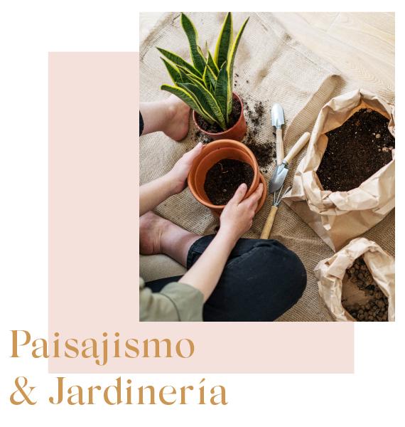 loving-the-flowers-paisajismo-y-jardineria